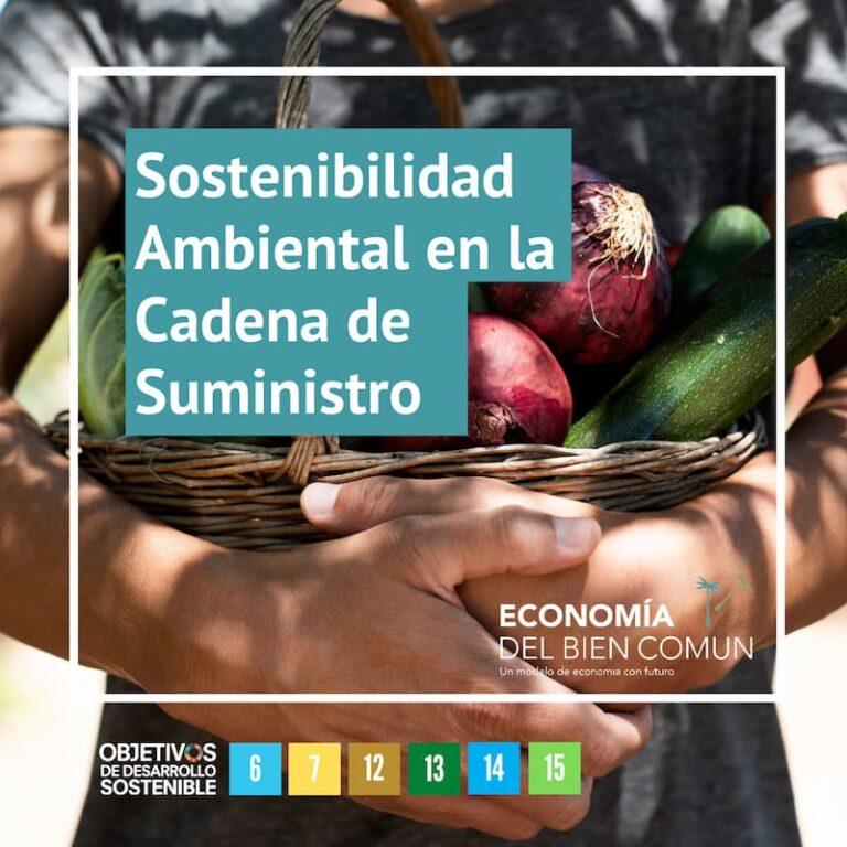 Sostenibilidad ambiental y bien común